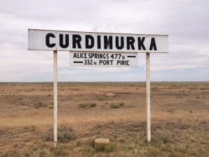 curdimurka-3